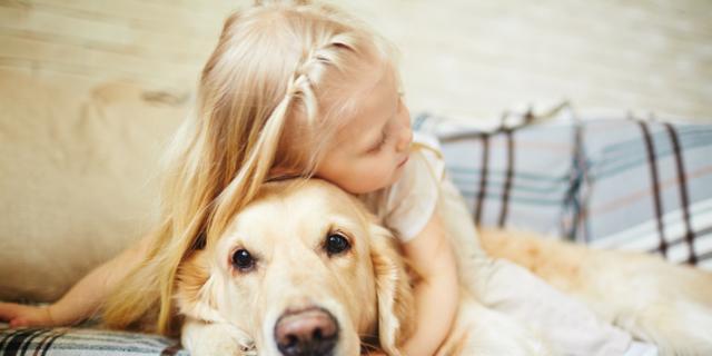 Asma ed eczema allergico: una cura… da cani