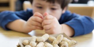 Allergia alle arachidi: la soluzione in una pillola?