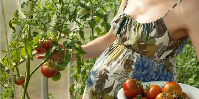 Diete veg: triplicati i casi di deficit materno di vitamina B12