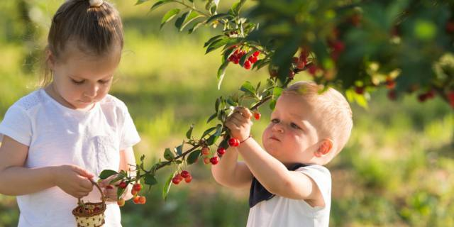 Rischio soffocamento nei bambini: ecco i 10 prodotti più pericolosi