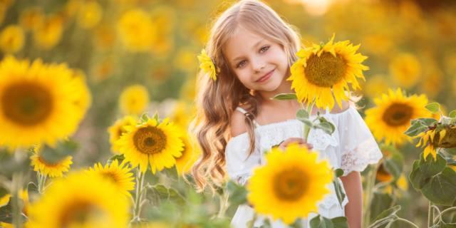 Allergie al veleno degli imenotteri
