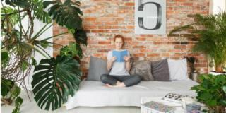 Pelle secca? Un aiuto dalle piante d'appartamento