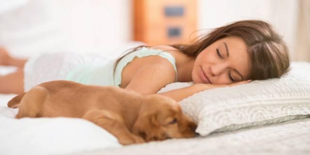 Per le donne il miglior compagno di letto è… il cane!