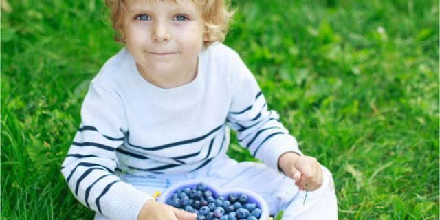 Mirtilli, un nuovo alleato contro la carie nei bambini (e non solo loro)
