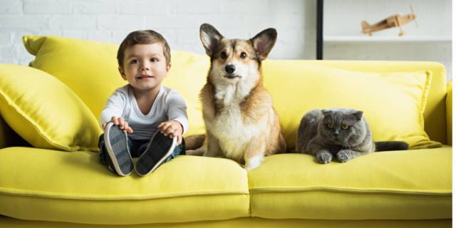 Allergie nei bambini: cani e gatti aumentano le difese