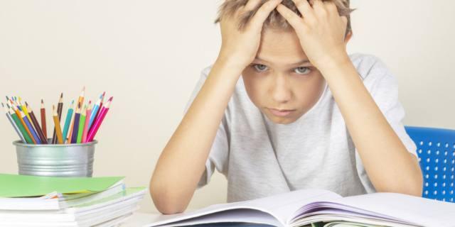 I bambini con Dsa dovrebbero scegliere la scuola che desiderano