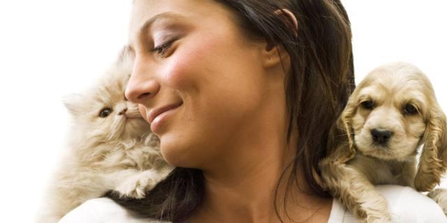 Cani e gatti all'università contro lo stress