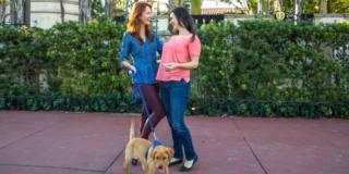 Bpco: avere un cane migliora la qualità della vita