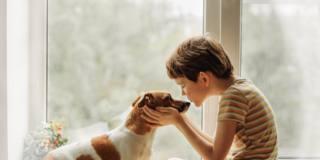 Quattrozampeinfiera: è a Milano l'appuntamento per gli amanti dei pet