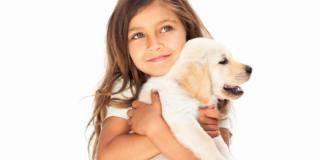 Ormone dell'amore più alto nei padroni e nei loro animali