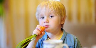 Dieta vegana nei bambini può causare danni irreversibili al cervello