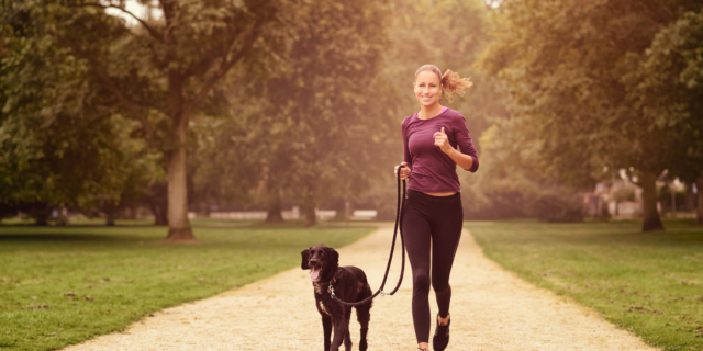 Dog Human Fitness: il nuovo sport si fa con il proprio cane