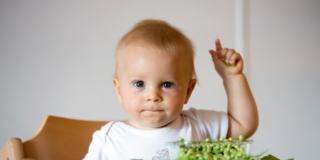 La dieta veg non fa bene ai bambini
