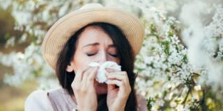 Allergie ai pollini: stagioni più lunghe e sintomi peggiori